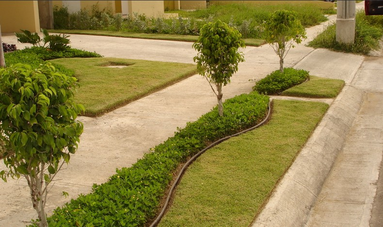 Landscaping designerscorner for Arbustos para patios